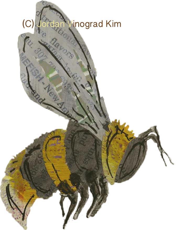 Jordan Vinograd Kim mixed media collage bee