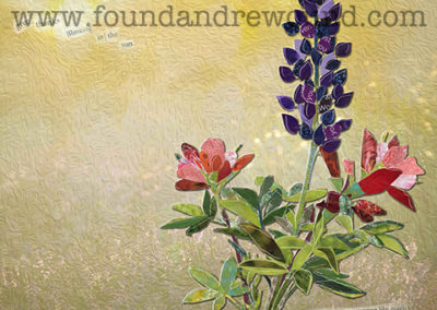 April Lupine and Paintbrush