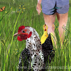 August Chickens