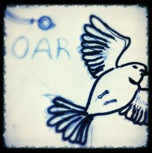 Jordan Kim cuckoo bird sketch
