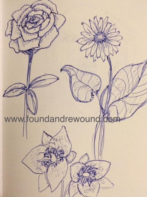 Jordan Kim floral sketch balsam root peonies and elegant cats ear