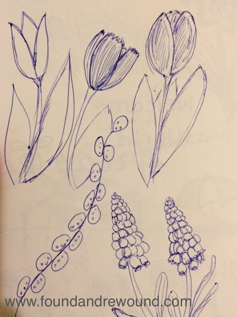 Jordan Kim floral sketch grape hyacinths tulips