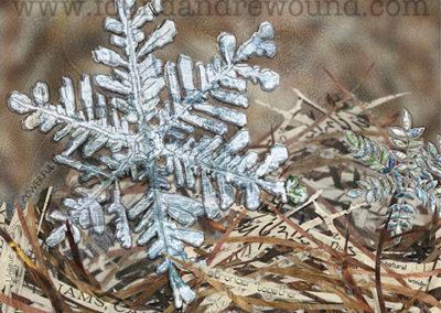 January Snowflake