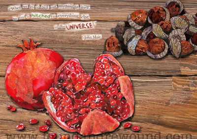 November Pomegranate and Acorns